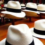 Return of Panama Hat